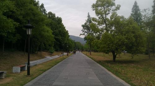 IMAG0157